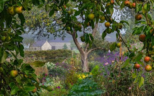 Winner, The Bountiful Earth category Aberglasney Gardens, Carmarthenshire, Wales