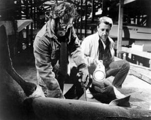Marine biologist Matt Hooper (Richard Dreyfuss) and police chief Martin Brody (Roy Scheider) in Jaws (1975).