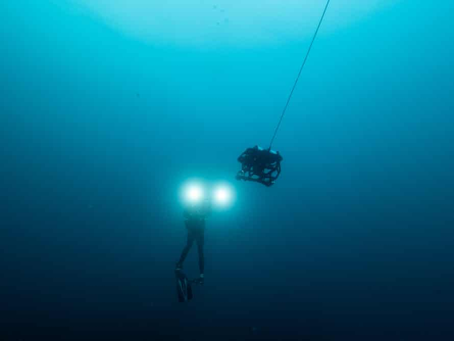 A submersible was used to explore Reef systems at depths of 50 metres or more