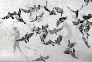 Pigeons fly during a monsoon high tide near the coast of the Arabian Sea in Mumbai