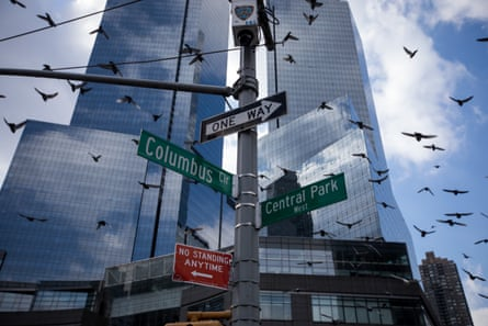 Skyscrapers in New York City. Conservationists want buildings adopt more 'bird-friendly' designs.