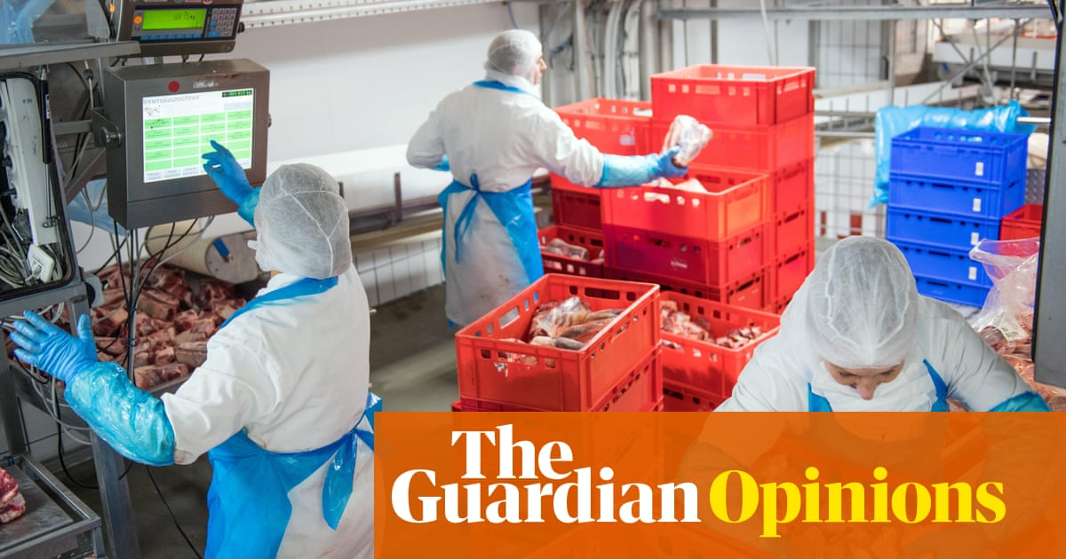 Less meat is good for us and the planet – why are politicians shy to say so?