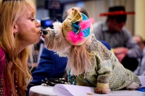 An owner kisses her dog