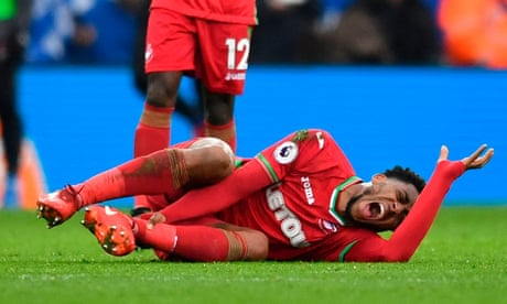 Swansea's Leroy Fer and Wilfried Bony out for season with serious injuries