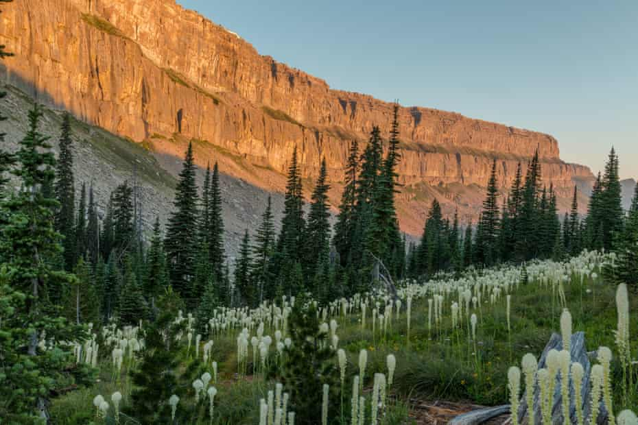Sunrise on the Chinese Wall in the Bob Marshall Wilderness, Montana