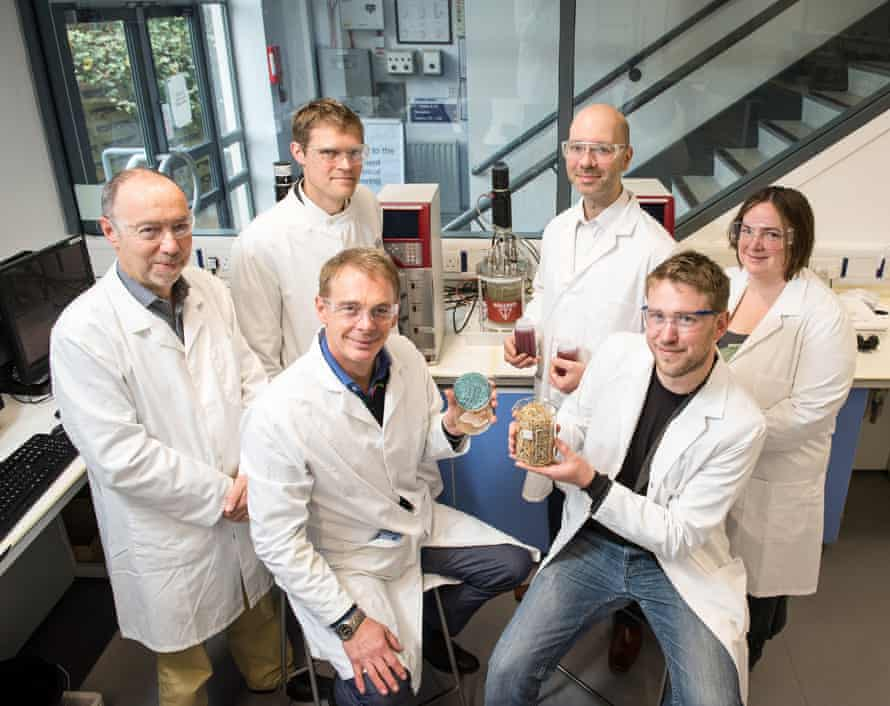 University of Bath chemical engineers are working on developing an alternative to palm oil from yeast.