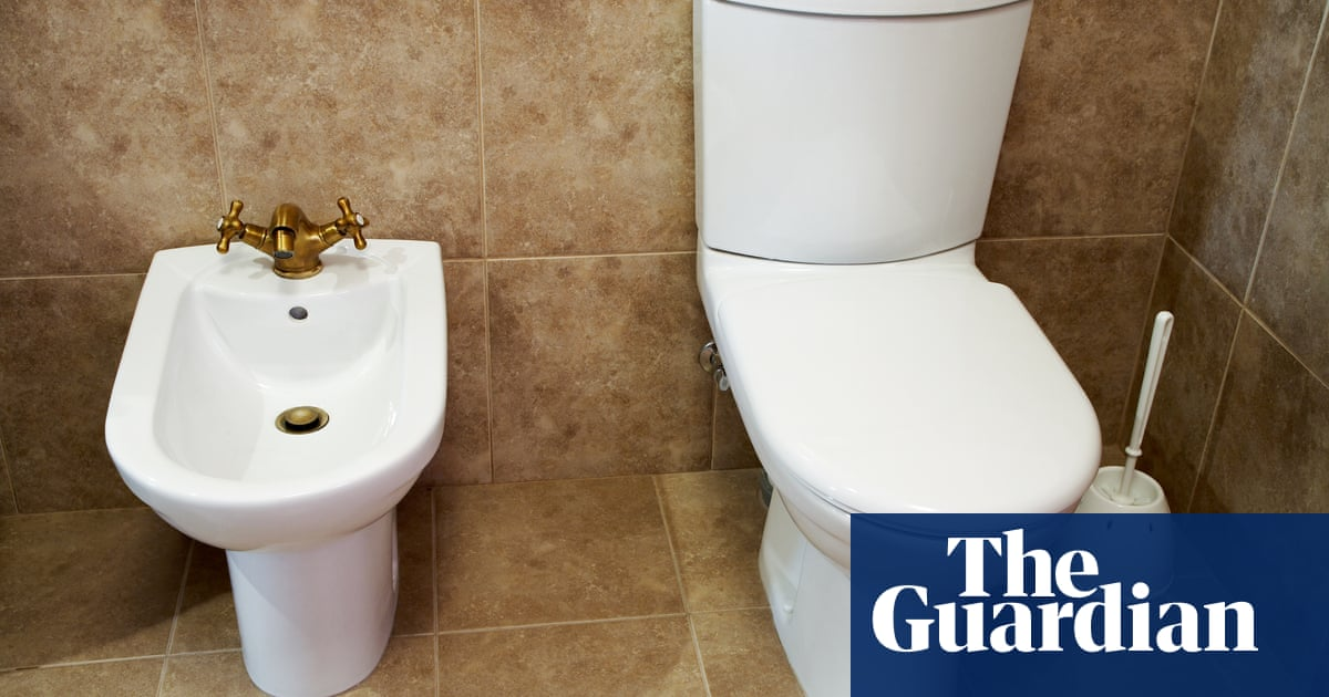 It Took A Pandemic But The Us Is Finally Discovering The Bidet S Brilliance Hygiene The Guardian