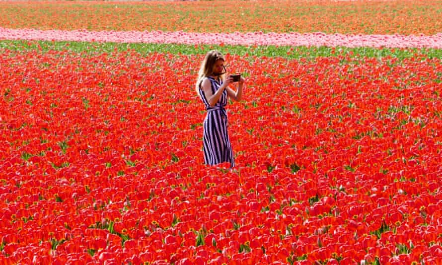A woman takes a selfie at the Keukenhof flower garden in the Netherlands