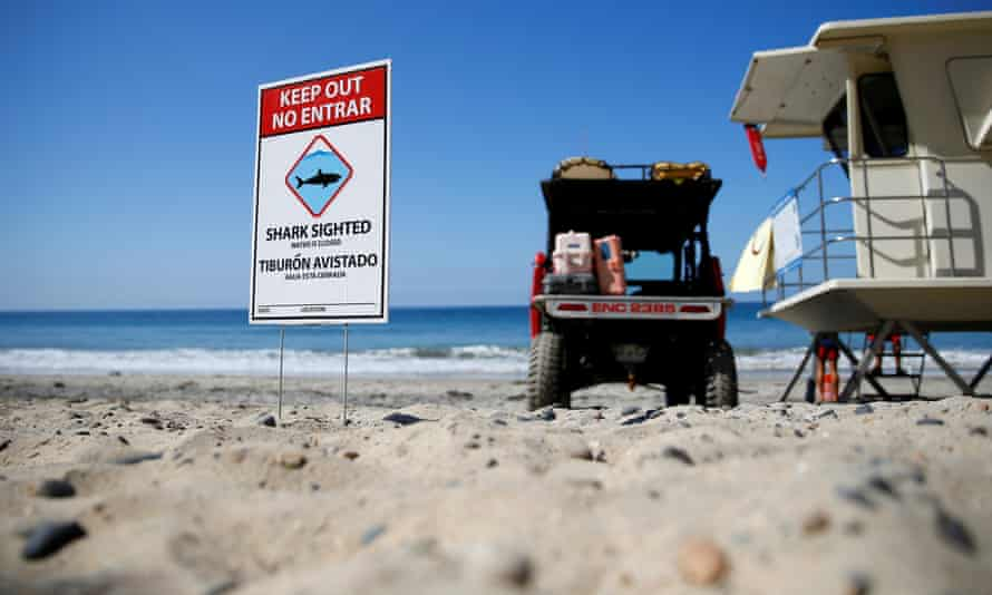 After clearing the ocean area of surfers and swimmers, lifeguards watch over the waters off Beacon's Beach.