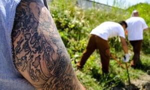 Prisoners gardening in Italy
