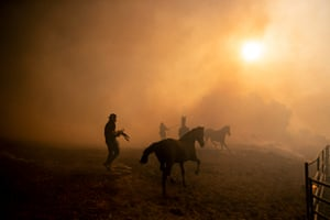 Ranchers evacuate horses at a burning ranch as the Easy fire spreads near Simi Valley.