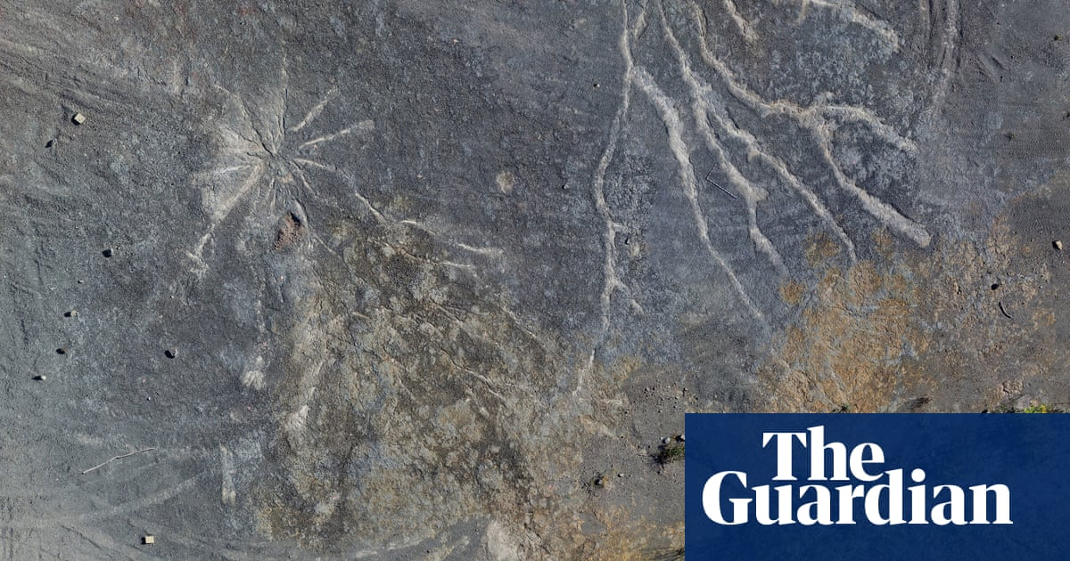 World's oldest known fossil forest found in New York quarry