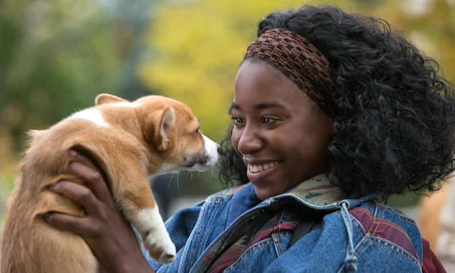 Cloying … A Dog's Purpose.