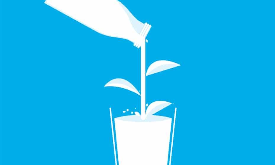 illustration: milk splash forming plant leaves