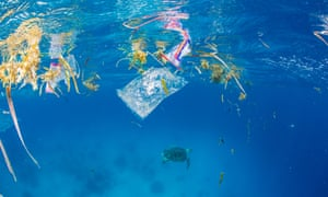 Not so fantastic … plastic is now everywhere.