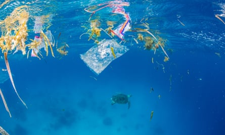 A green sea turtle swims away from plastic pollution in the Philippines