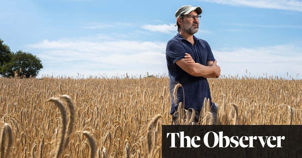 Adam Buxton: 'We're in the sad sandwich of life, but it has a surprising zing of pickle'