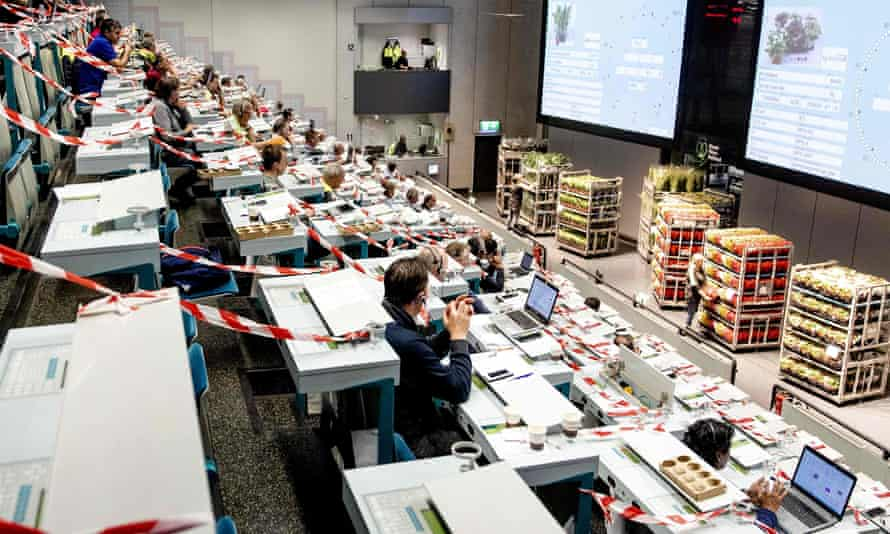 Flower traders separated by tape in the FloraHolland Auction Hall in The Hague