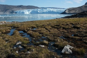 Water from the Greenland ice sheet flows through heather and peat as the Eqip Sermia Glacier stands behind during unseasonably warm weather in Greenland in 2019.