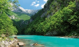 The section of the Tara river in Montenegro that would be affected by dams on the Drina.