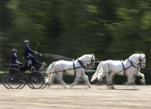 The breed's peaceful nature also makes them a popular horse for riding, and some are used in international carriage driving events.