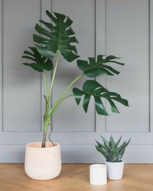 Faux monstera plant, Rose & Grey, £165.