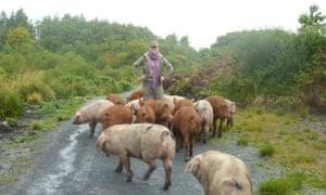 Dr Karen Wicks with pigs