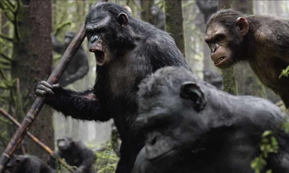 طلوع سیاره میمون ها.