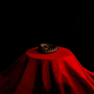 A snake on a red cloth