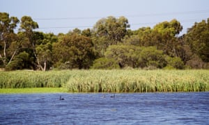 Bibra Lake in Perth