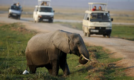 Tourists watch an elephant in Amboseli national park, Kenya. The study found that the revenue losses were higher than paying for stronger anti-poaching measures.