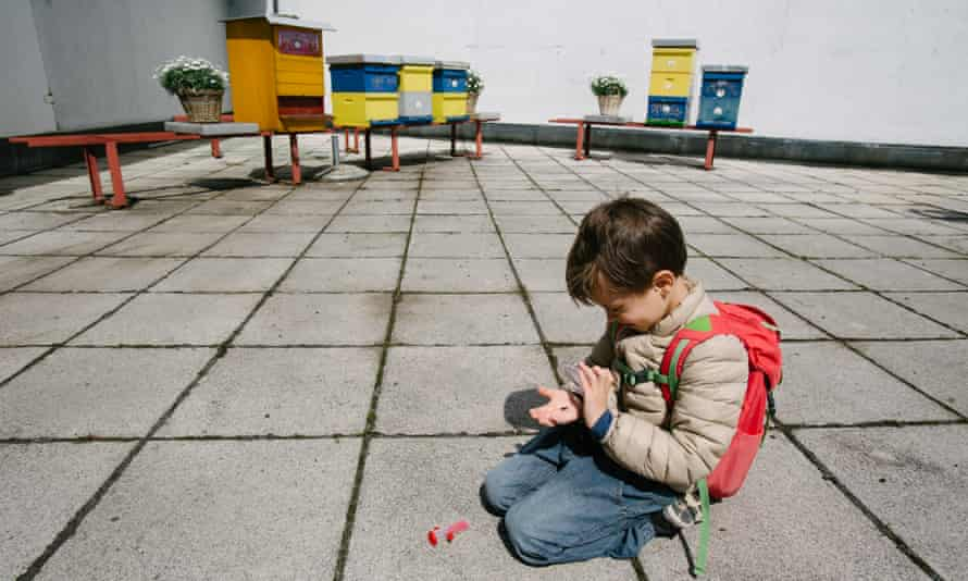 A boy inspects a bee in front of beehives on the roof of Cankarjev dom cultural and congress center in Ljubljana, Slovenia, during a guided tour by urban beekeeper Franc Petrovcic on April 20, 2017.