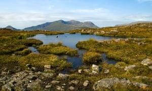 The Snowdon range, from Yr Arddu.