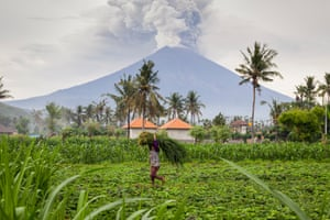 A farmer carries on working despite the eruptions