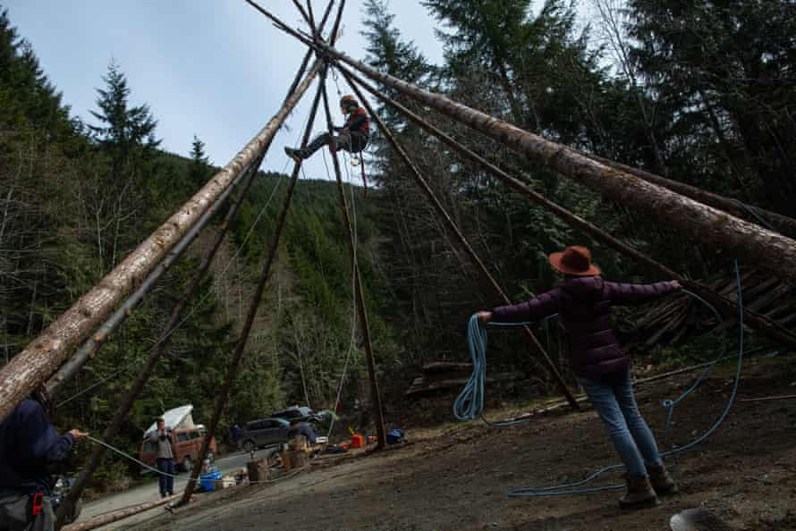 Activists erect a structure at logging road blockade on southern Vancouver Island.