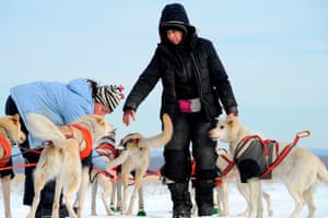 Marla Brodsky inspects her team of sled dogs at a farm