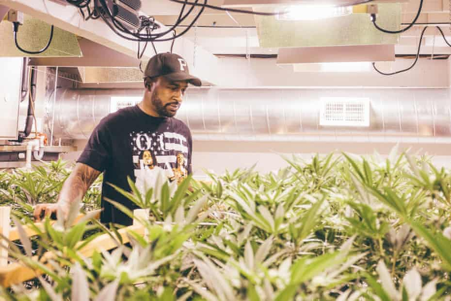 Jesce Horton, a young entrepreneur who wants to see more black business owners enter the cannabis industry,
