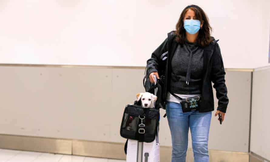 A woman carries her dog as she walks through an airport