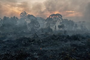 Fire burns peatland and fields in Riau, Indonesia.