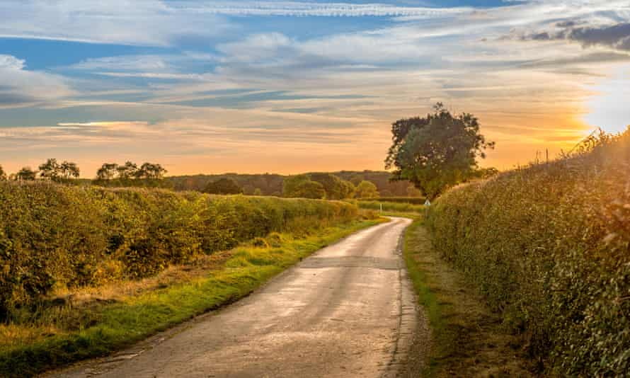 Hedgerows in the Lincolnshire countryside near the small village of Aslackby