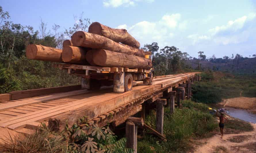 Transportation of timber logs, Amazon rainforest Brazil