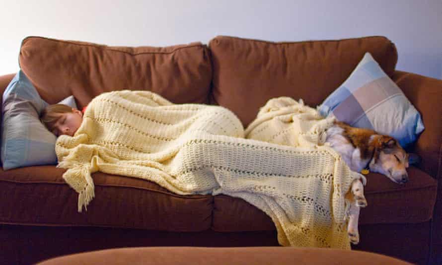 Woman sleeping on sofa and dog.