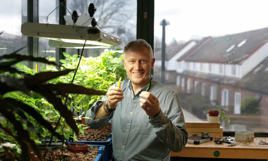 Green Lab founder Ande Gregson.