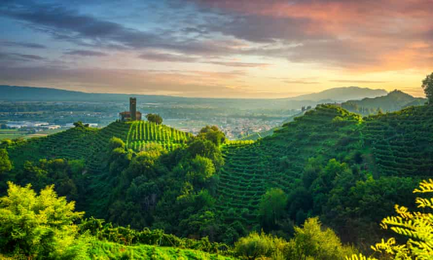 Prosecco vineyards around San Lorenzo church in Veneto, Italy
