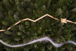 The world's longest treetop walk in Laax, Switzerland