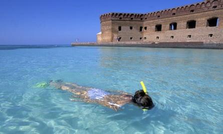 Dry Tortugas, Garden Key Snorkling at Fort Jefferson, U.S.A., Florida,