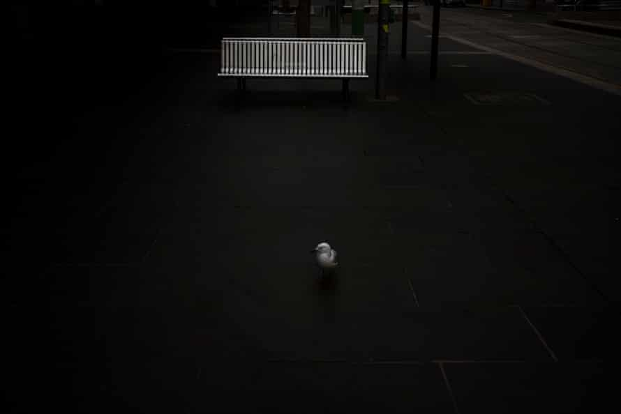 Bourke Street in the heart of Melbourne's CBD is dead.