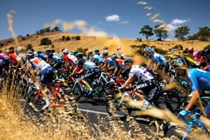 Tanunda, Australia The peloton rides through the South Australian landscape during the first stage of the Santos Tour Down