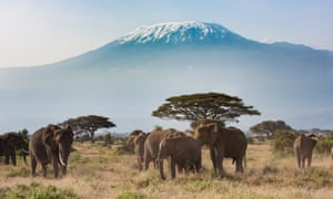 Mount Kilimanjaro - a natural wonder at risk from climate change as its glaciers shrink.