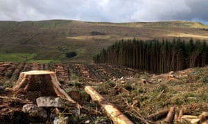The felling of commercial forests in the North Yorkshire Dales, National Park, UK. Land use change like deforestation was a significant early human contributor to global warming.